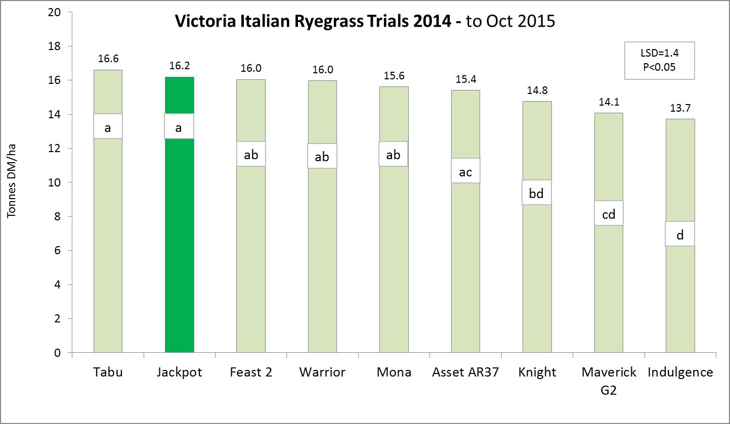 Jackpot - Victoria italian rygrass trials image