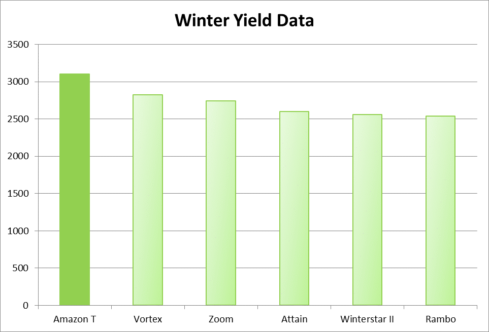 amazon_t_winter_yield_data